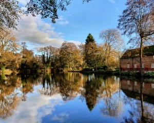 Reflections on the moat.jpg