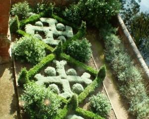 The herb garden .jpg